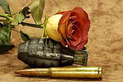 Rosenkrieg-Liebe und Partnerschaft