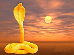 Kundalini-Schlange, erlöste sexuelle Energie
